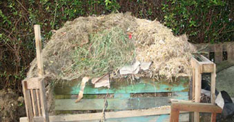 compost-at-home-cropped_40dpi.jpg